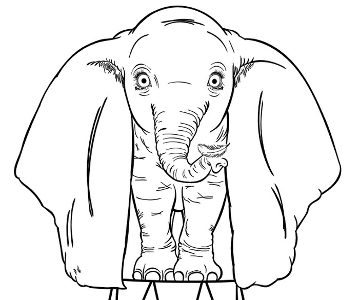 Coloriage Dumbo Dumbo 2019 Tim Burton 9
