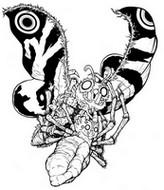 Coloriage Mothra et Kumonga