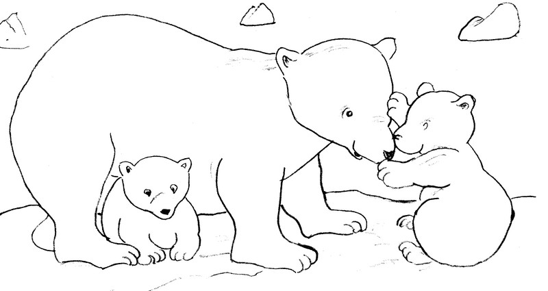 Coloriage Animaux Ours Polaires 10