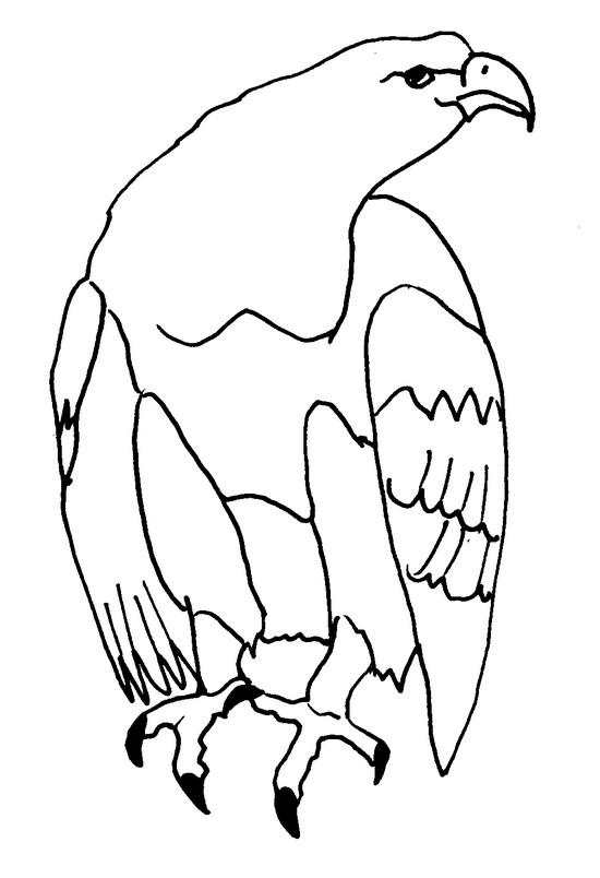 Coloriage Animaux Aigle 2
