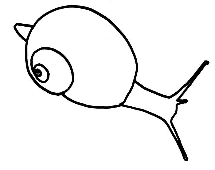 Coloriage Animaux Escargot.Coloriage Animaux Escargot 21