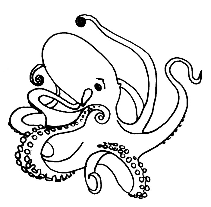 Coloriage Animaux Pieuvre 22