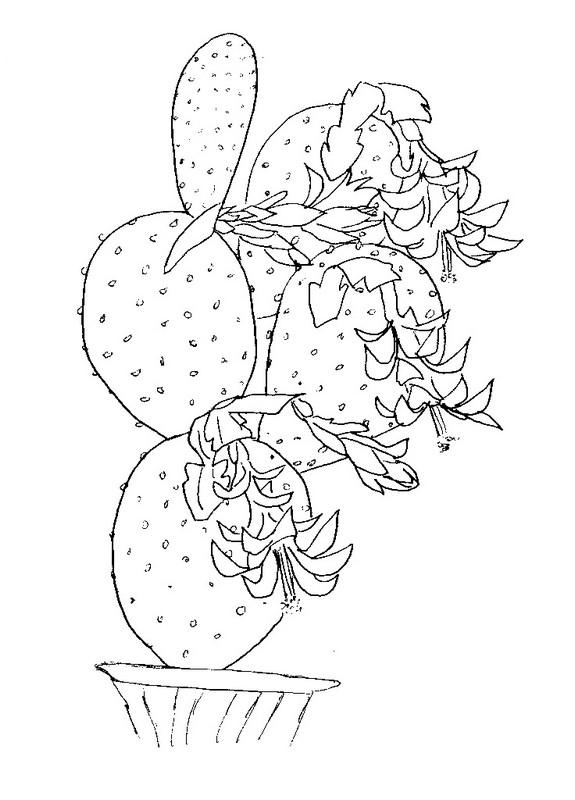 Coloriage fleurs cactus 2 - Coloriage cactus ...