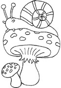 Coloriage Escargot