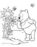 Coloriage Winnie et les tournesols