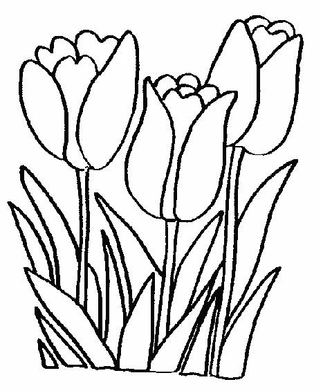 Coloriage printemps tulipes 4 - Dessin de fleur facile ...