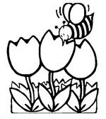 Coloriage Abeille butinant des tulipes
