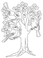 Coloriage Arbre en fleurs et oiseaux