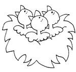 Coloriage Oisillons dans leur nid