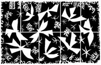 Coloriage Henri Matisse: Polynésie, le ciel