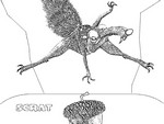 Coloriage L'Age de Glace - Scrat