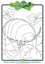 Coloriage L'animal d'Arrietty
