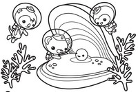 Coloriage Coquillage et perle