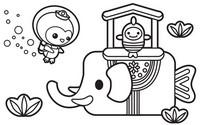 Coloriage L'éléphant de mer