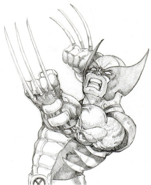 Coloriage wolverine 8 - Wolverine dessin ...