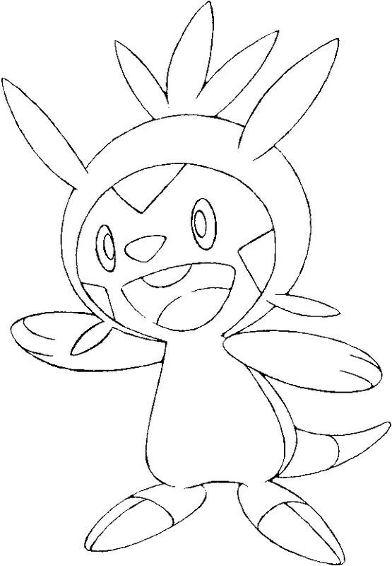 pokemon coloring pages talonflame xy | Coloriage Pokemon X et Y : Marisson 1