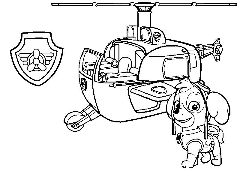 Coloriage Pat Patrouille Stella Son Helicoptere Et Son Badge 7