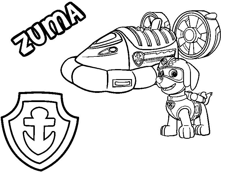 Coloriage Pat Patrouille Zuma Son Aeroglisseur Et Son Badge 8