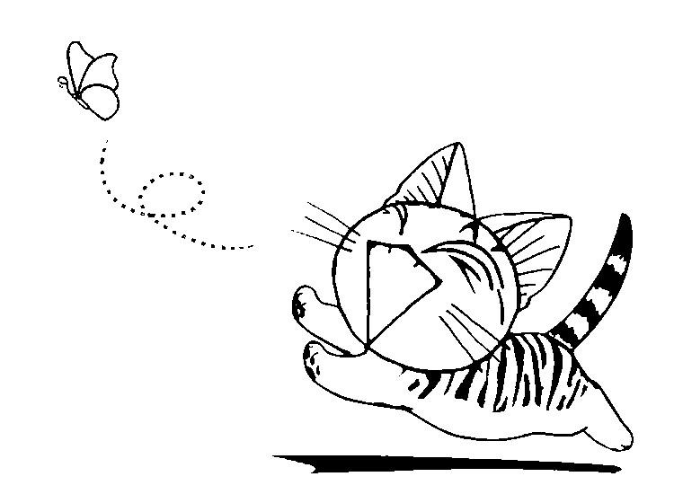 Coloriage chi une vie de chat la chasse aux papillons 3 - Dessin de chi ...